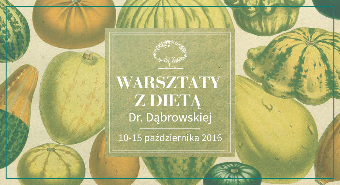 1100x600_www_warsztaty_z_dieta