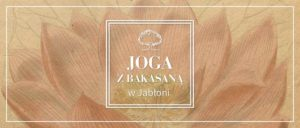 joga-z-bakasana-2_1100x470p