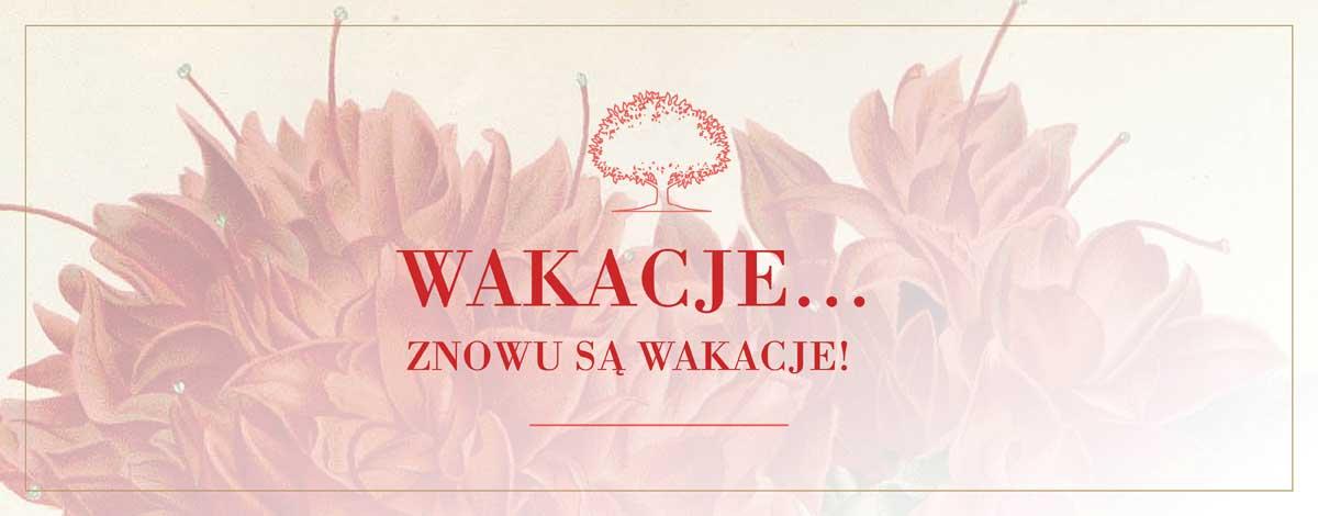 baner-w-ofercie-WAKACJE2019